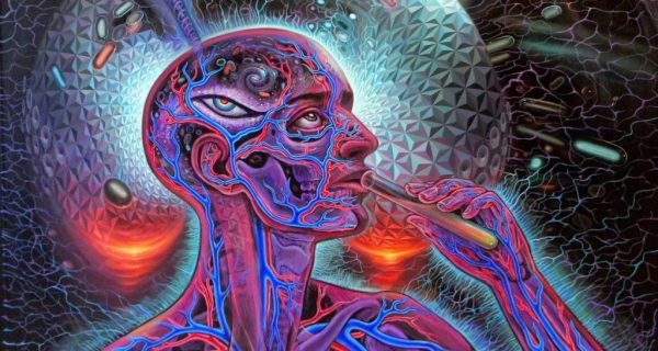 Communication with Discarnate Entities Induced by DMT