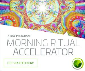 Insanity is Sanity - Morning Ritual Accelerator
