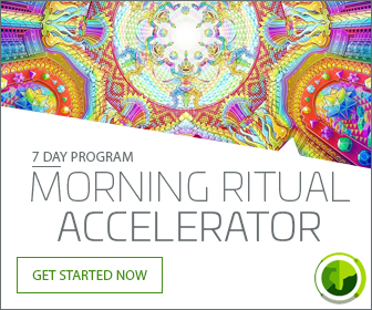 Insanity is Sanity - Morning Ritual Accelerator Course